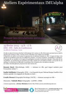 Affiche AEX Animal